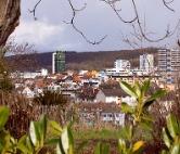 Die Frauenärzte Lörrach-Schopfheim